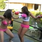 Knockoutgirlz pictures